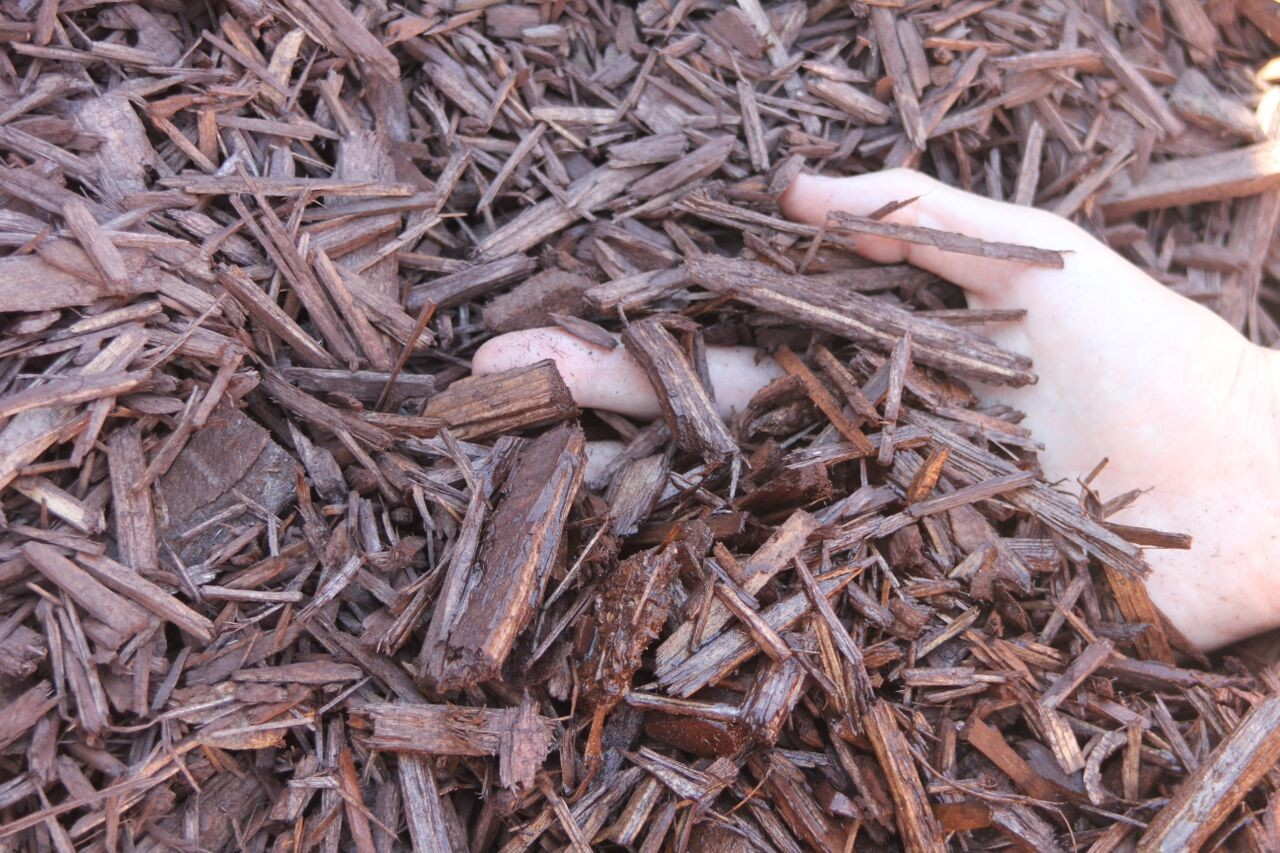 Brown Recycled Wood Chips