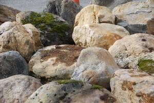 Sierra Boulders