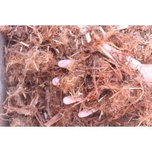 Shredded Redwood Mulch